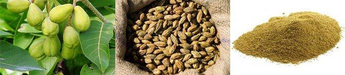 Haritaki Tree, Haritaki Seed, Haritaki Powder
