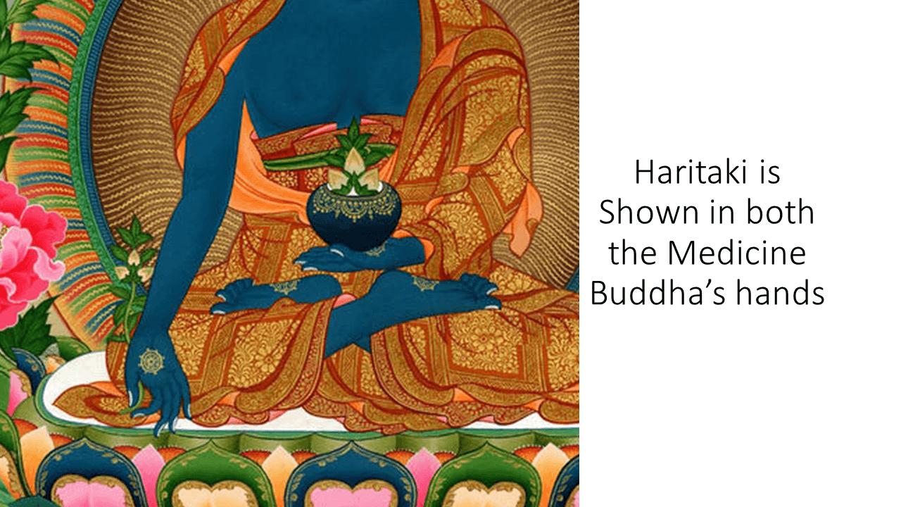 Haritaki Medicine Buddha